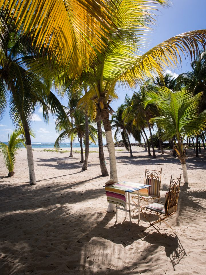 la désirade, plage à fifi, guadeloupe