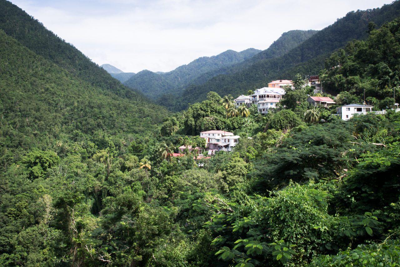 guadeloupe, nature, verte, vieux habitants, basse terre