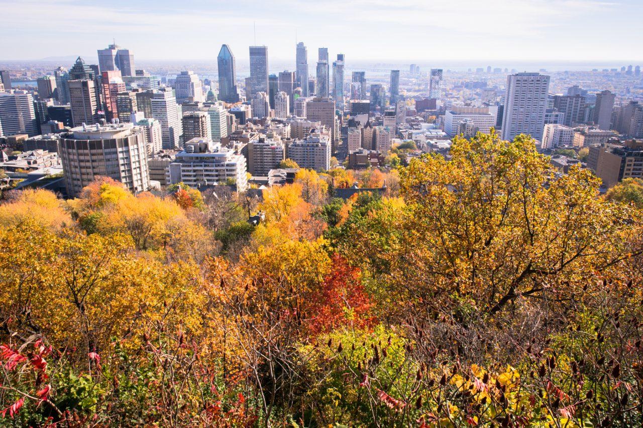 l automne à montréal-point de vue montreal- Parc Montréal-skyline montreal