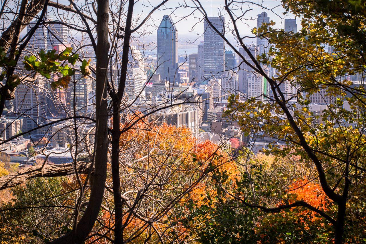 automne à montréal-slyline montréal-parc montréal qc-canada photos