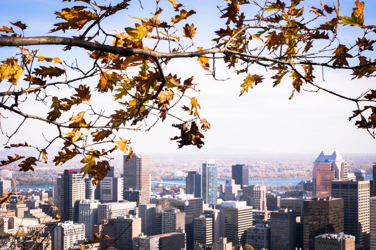 l automne à montréal-skyline montréal-parc montréal qc