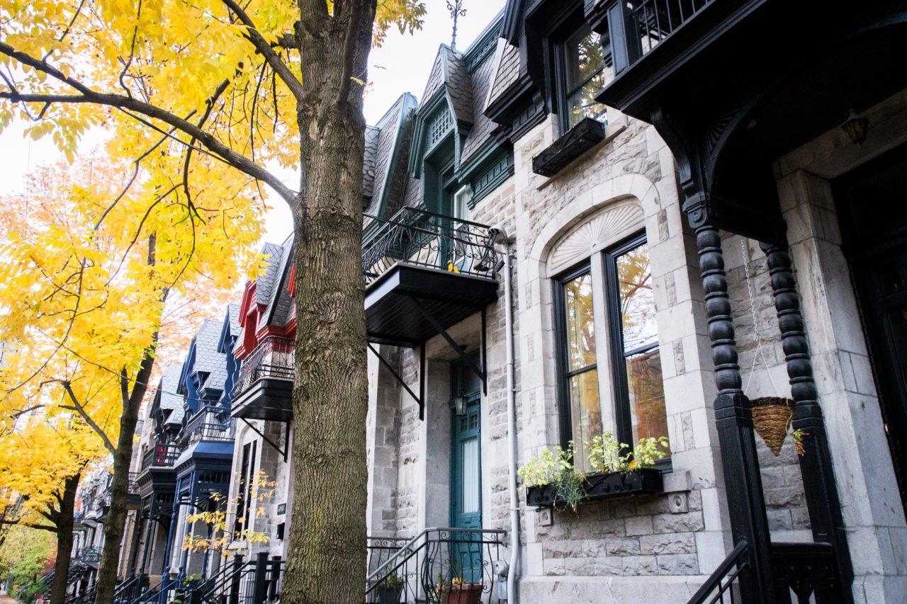 l automne à montréal- architecture moderne montréal-
