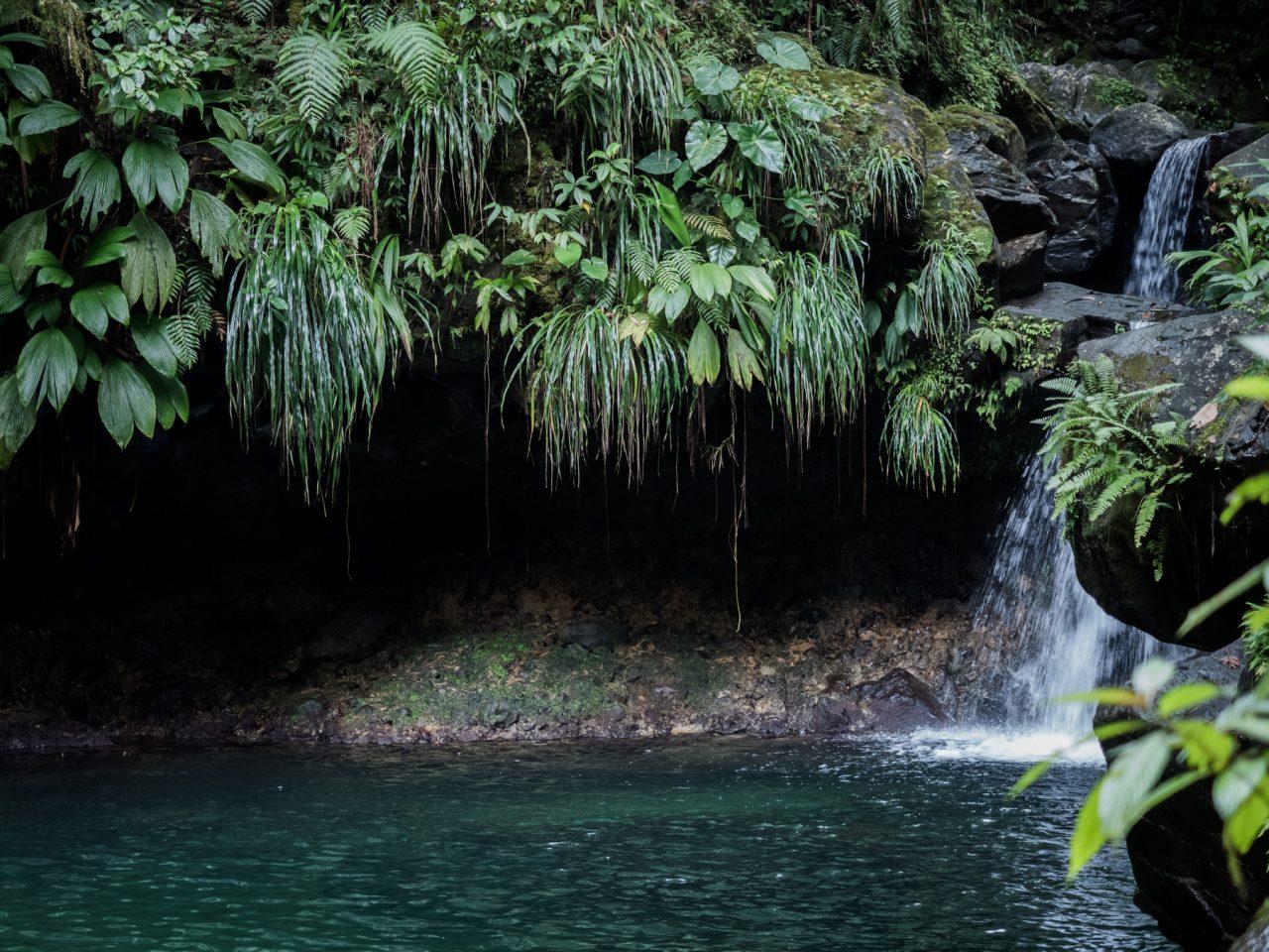 cascade paradise guadeloupe - capesterre belle eau - guadeloupe foret tropicale