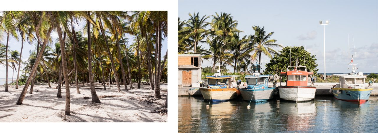 guadeloupe plage-ile desirade-bateau guadeloupe desirade-cocotiers guadeloupe