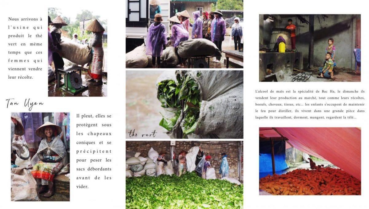riziere nord vietnam-vietnam photos- vietnam montagnes du nord-ethnies minoritaires vietnam-vietnam photos