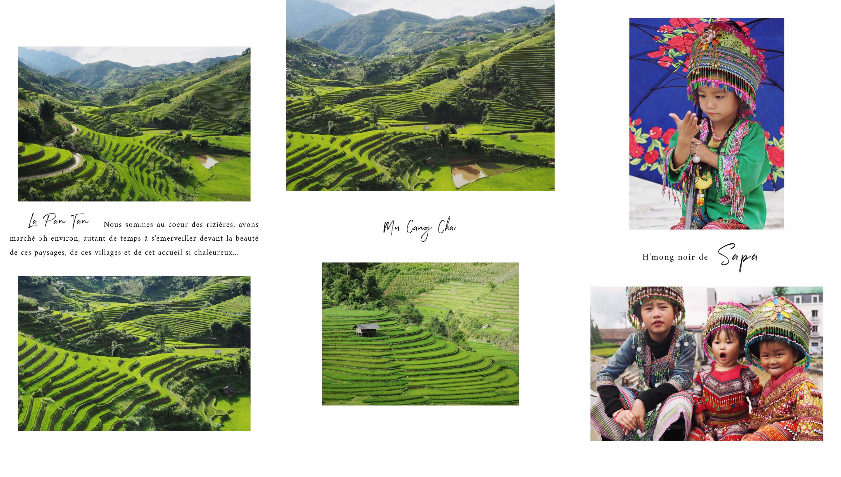 les rizières du nord du Vietnam