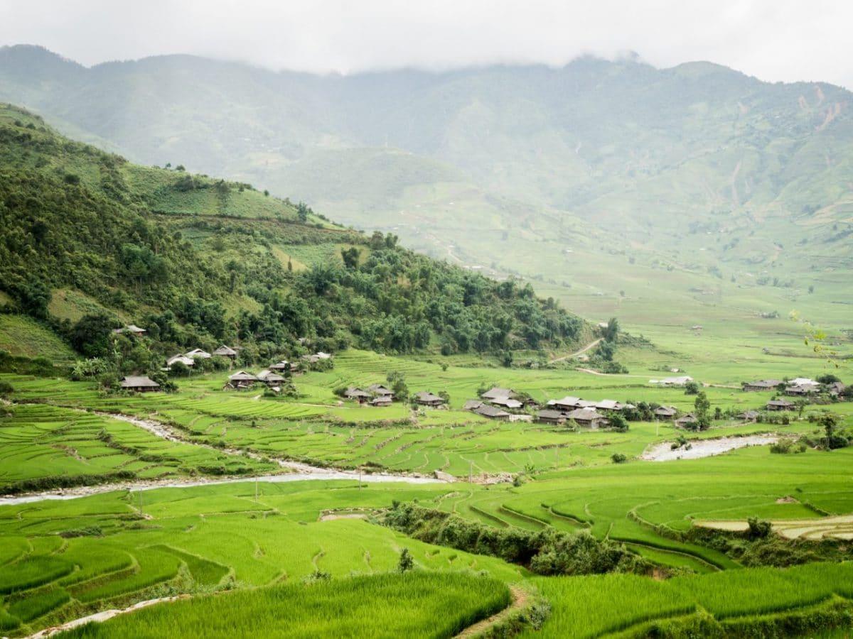photo riziere vietnam-vietnam du nord-ethnies minoritaires du vietnam - lim thai - lim mong