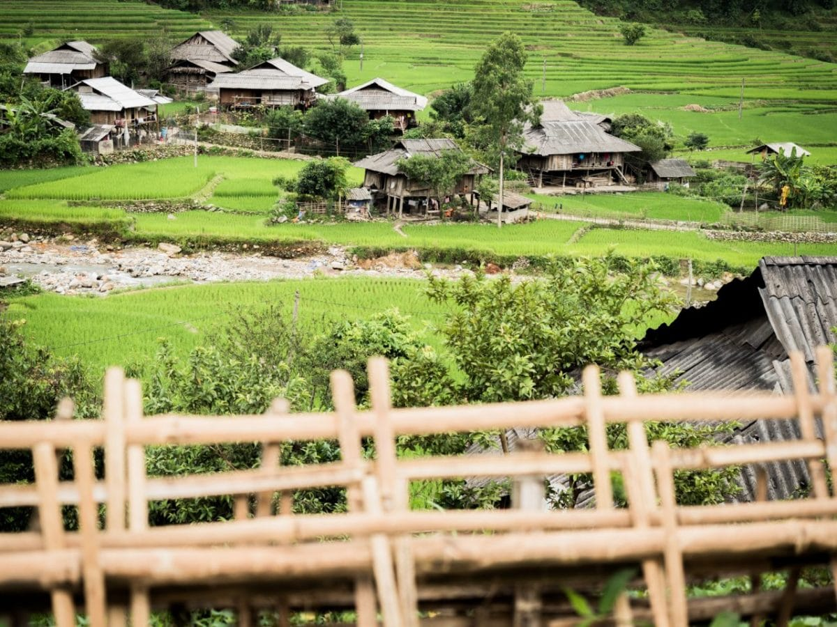 riziere au vietnam -vietnam montagne du nord-ethnie minoritaire du vietnam--lim thai, lim mong