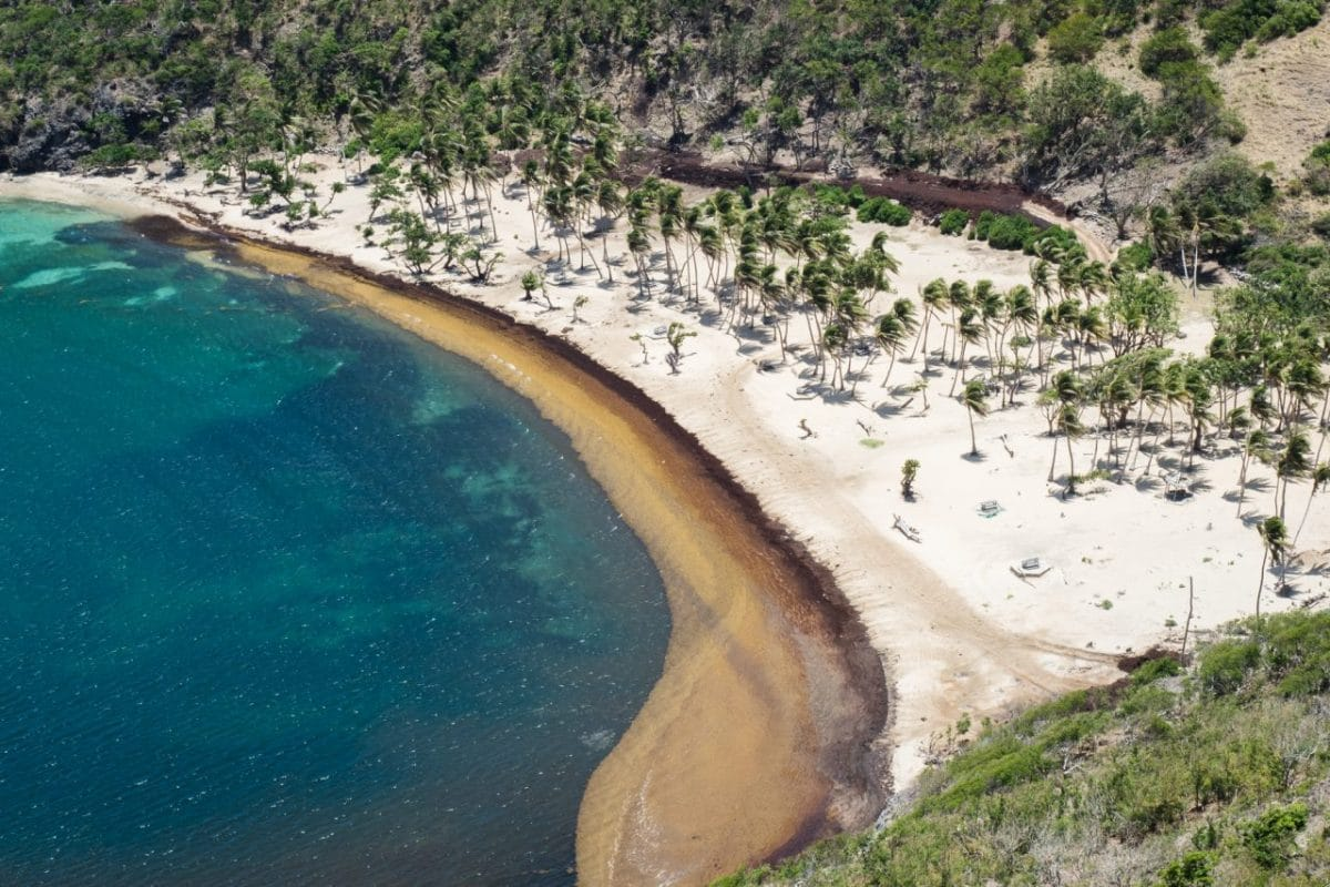 plage pompiere guadeloupe vue du ciel - terre de haut guadeloupe-archipel les saintes