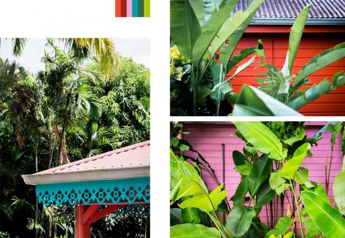 jardin botanique de deshaies, jardin tropical guadeloupe