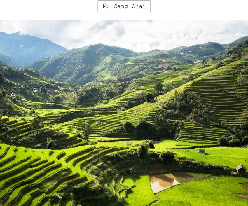 vietnam - mu cani chai - asie - rizière