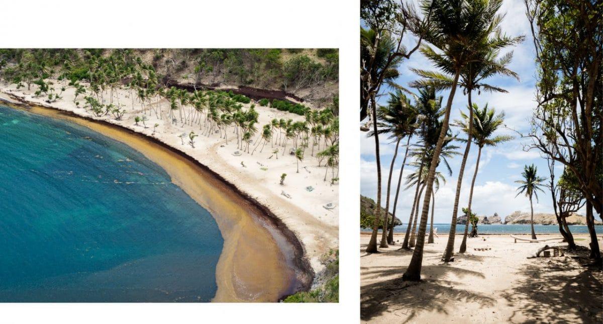 visiter les saintes guadeloupe-plage terre de haut-vue aérienne guadeloupe