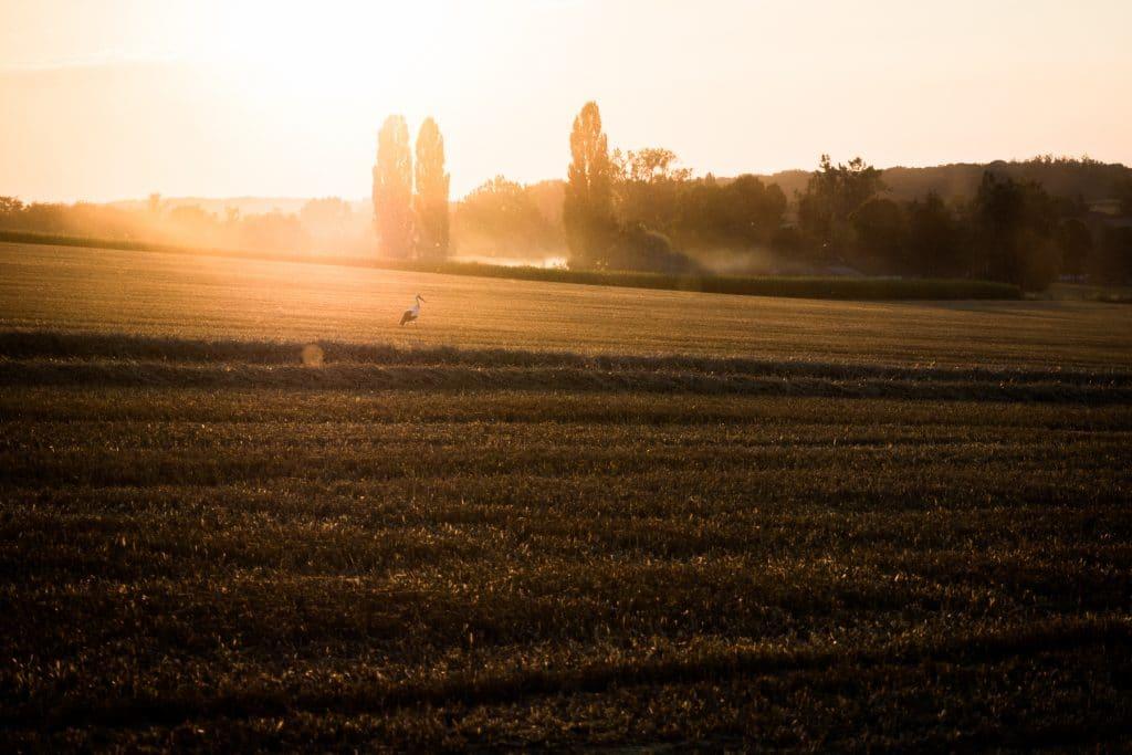 vosges paysage-Alsace photos-photo paysage alsace