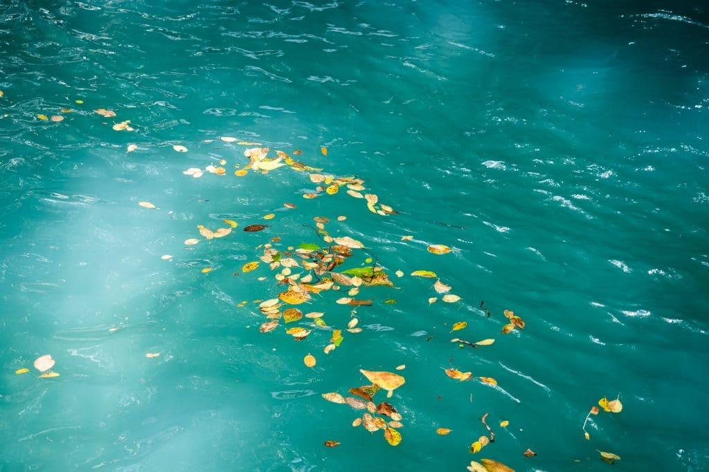 cascade le saut d acomat-guadeloupe foret tropicale-rivière d acomat & saut d acomat
