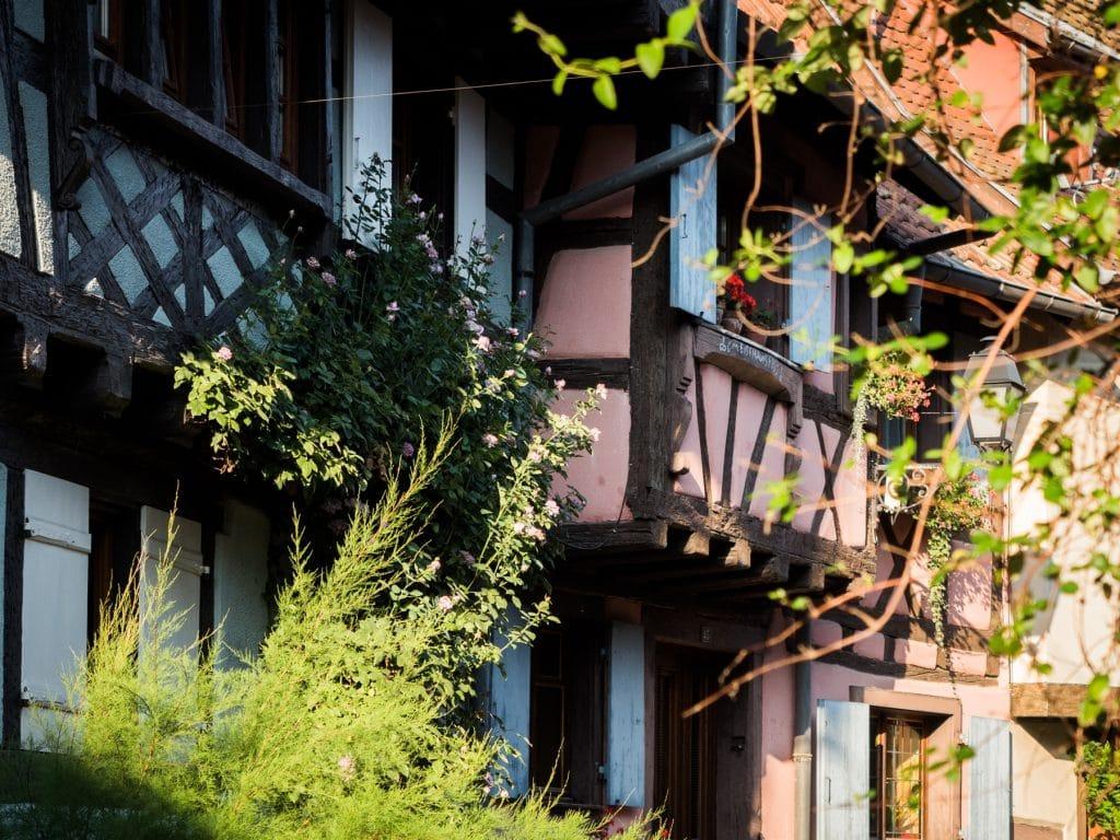 beau village alsace- plus beau village d alsace - village typique alsace-alsace village a visiter vosges, route des vins, vignobles, eguisheim