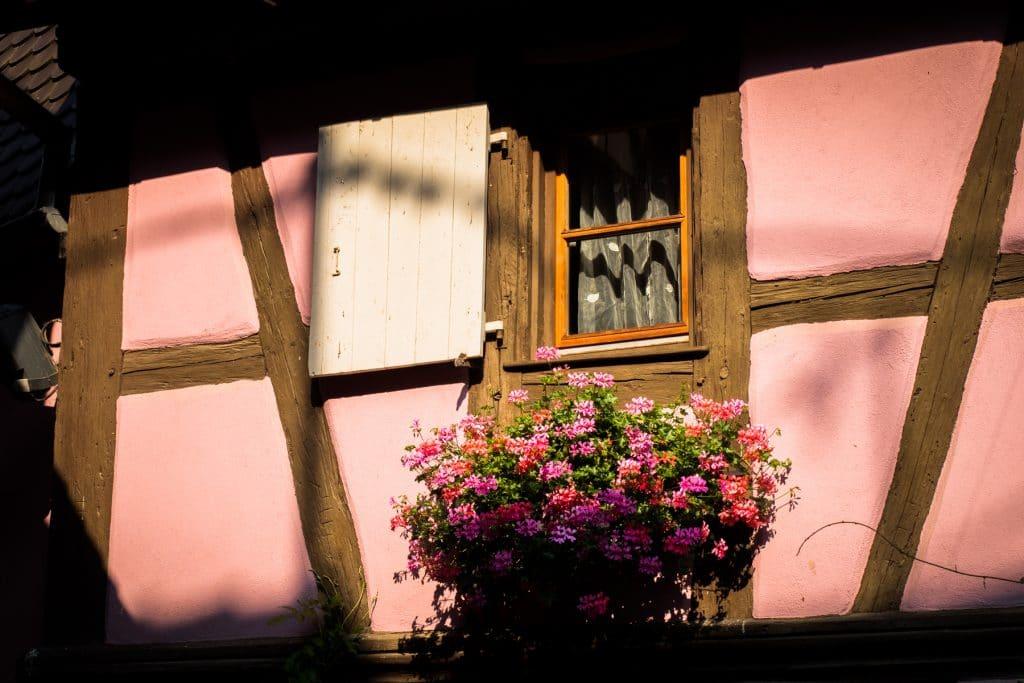 alsace, vosges, route des vins, vignobles, eguisheim