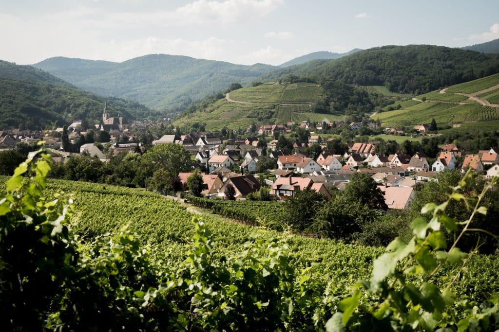 alsace, vosges, route des vins, vignobles, colmar