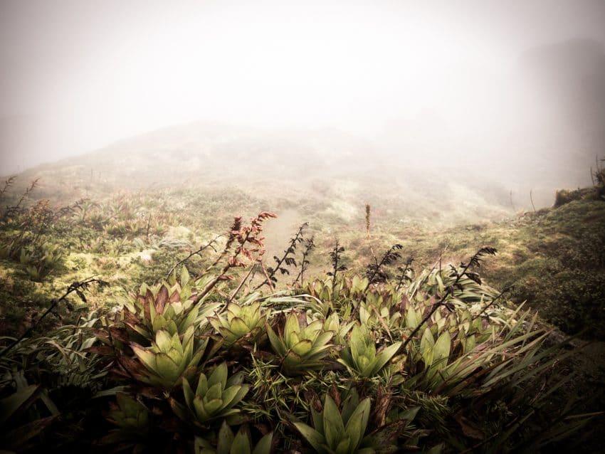 ile de montserrat antilles - volcan antillais - la soufrière