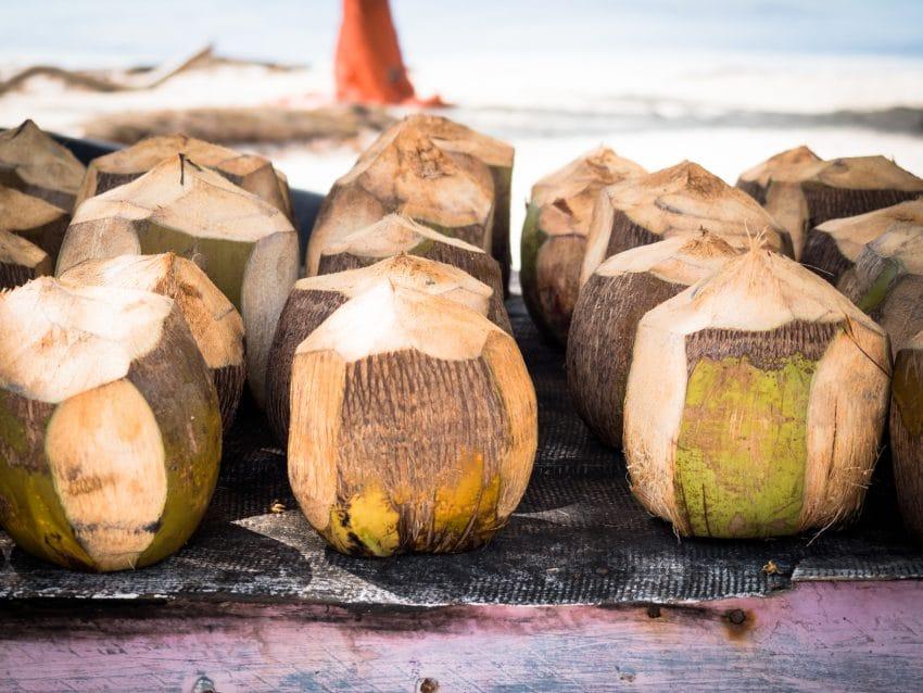 mano juan punta cana, noix de coco plage saona et plage bayahibe en republique dominicaine