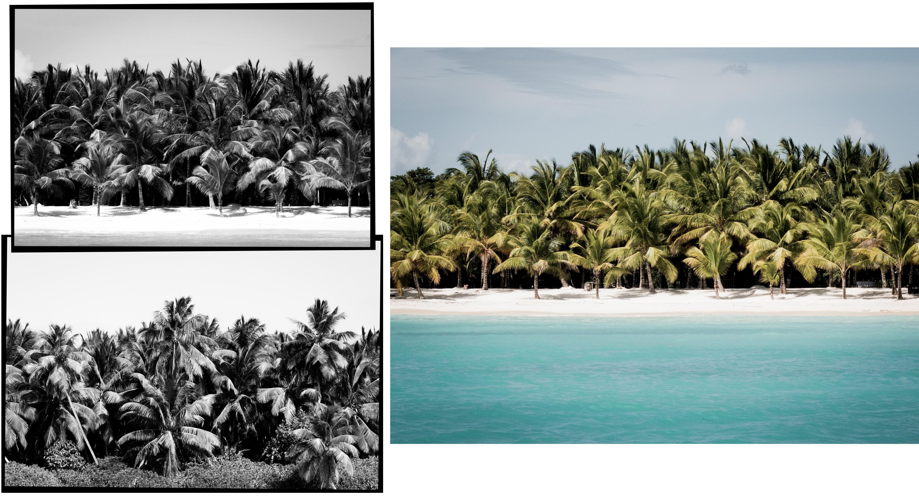 voyage caraibes-saona republique dominicaine - excursion en bateau à saona