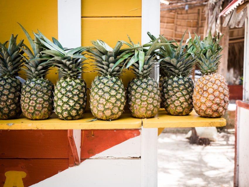 Photo d'un sejour en republique dominicaine cote caraibes sur la péninsule de samana,