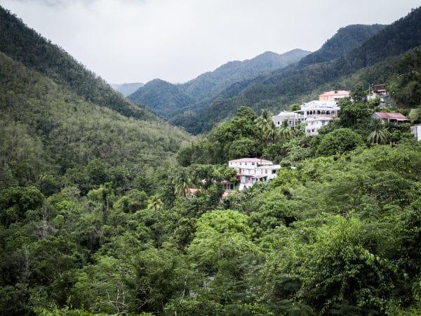 Carte postale de Guadeloupe - Photo de voyage dans la jungle et laforêt tropicale en guadeloupe