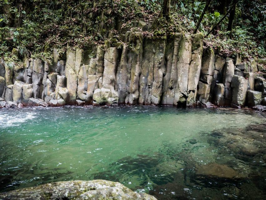 Photo foret tropicale et cascade paradis en guadeloupe -