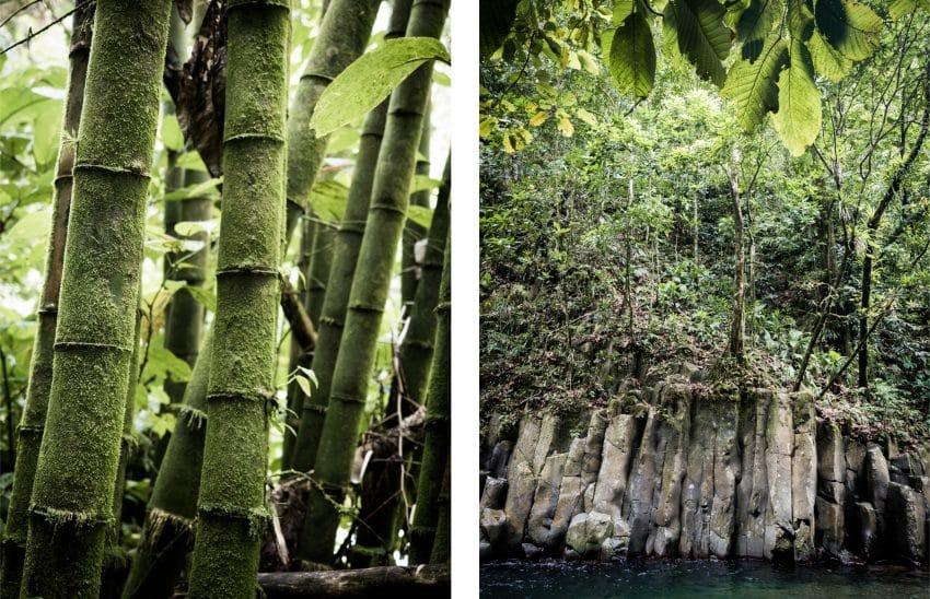 Cascade Paradis Guadeloupe