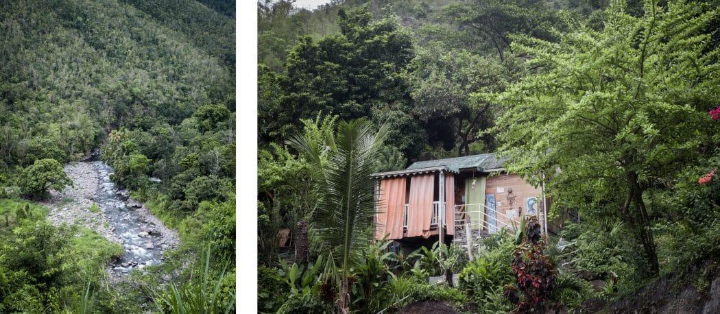 Plantation guadeloupe - plantation café guadeloupe