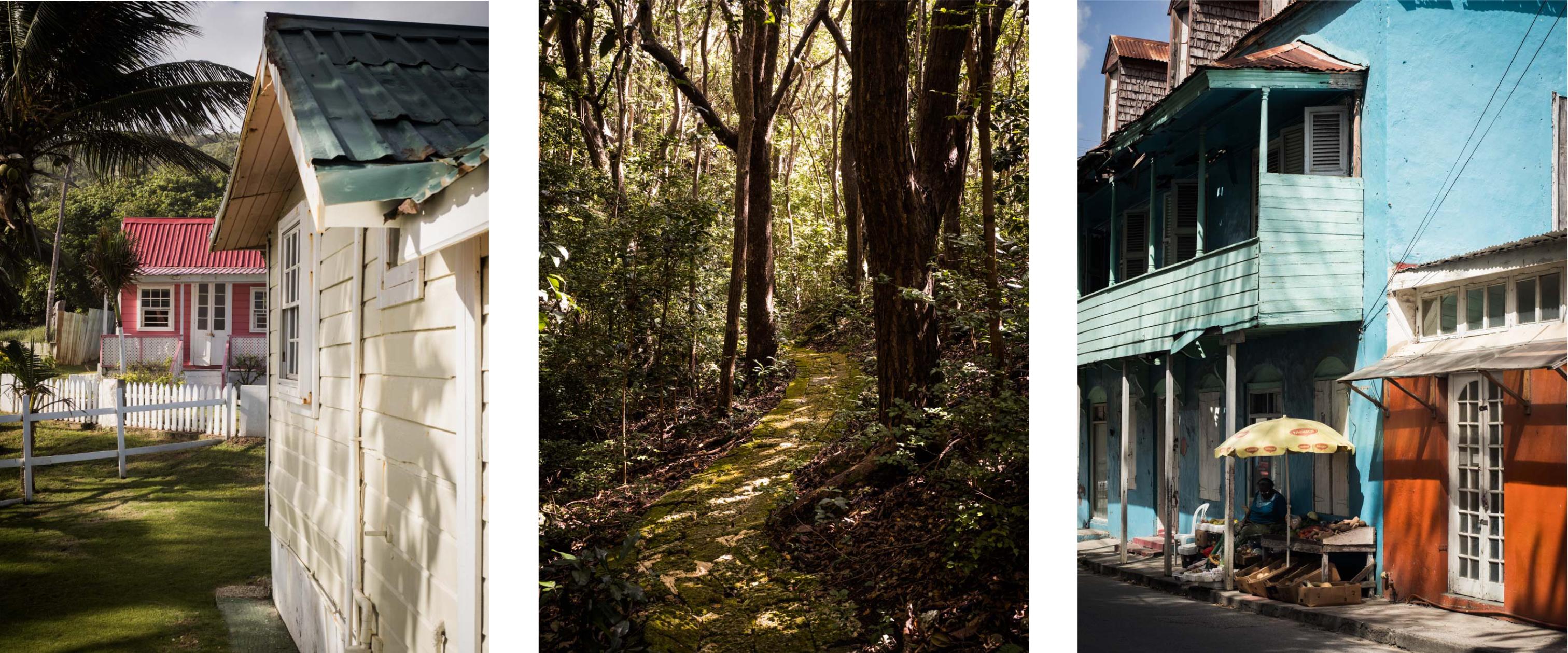 découvrir la barbade - architecture typique- antilles - jardin tropical - chattel house