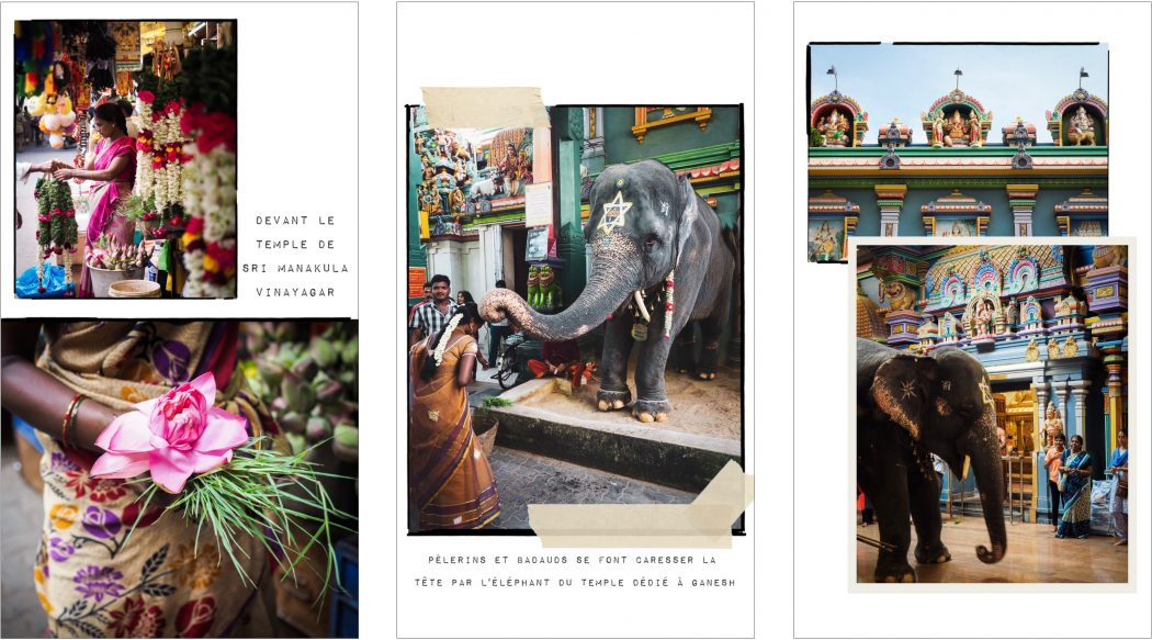 Elephant devant le sri manakula vinayagar temple - carnet de voyage inde du sud