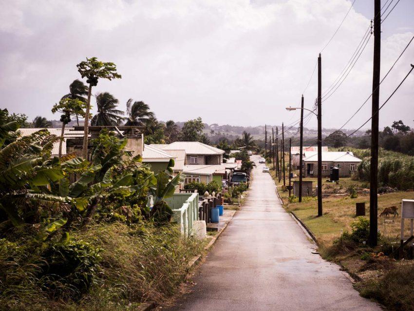 découvrir la barbade