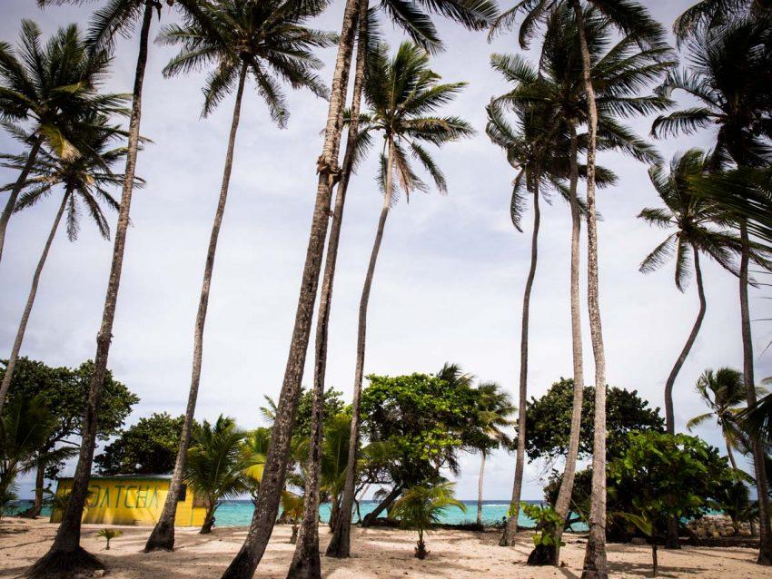 que voir à Marie galante - plages paradisiaques des caraïbes