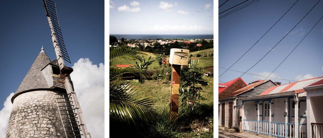 que faire en Guadeloupe - que voir à Marie Galante - plantations de cannes à sucre à Marie Galante - l'ile aux cent moulins