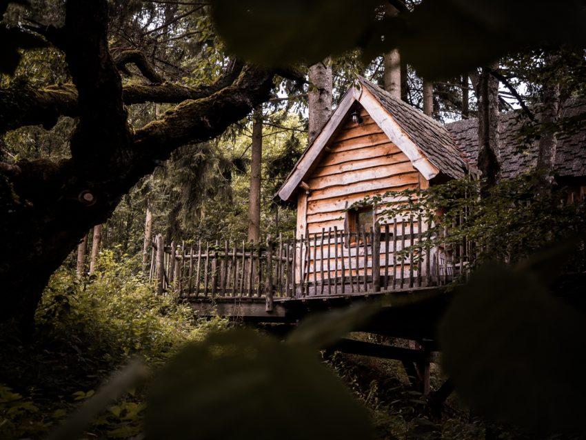 cabane perchée dans les Vosges, hébergement insolite en Alsace, cabanes essentielles Thannenkirch