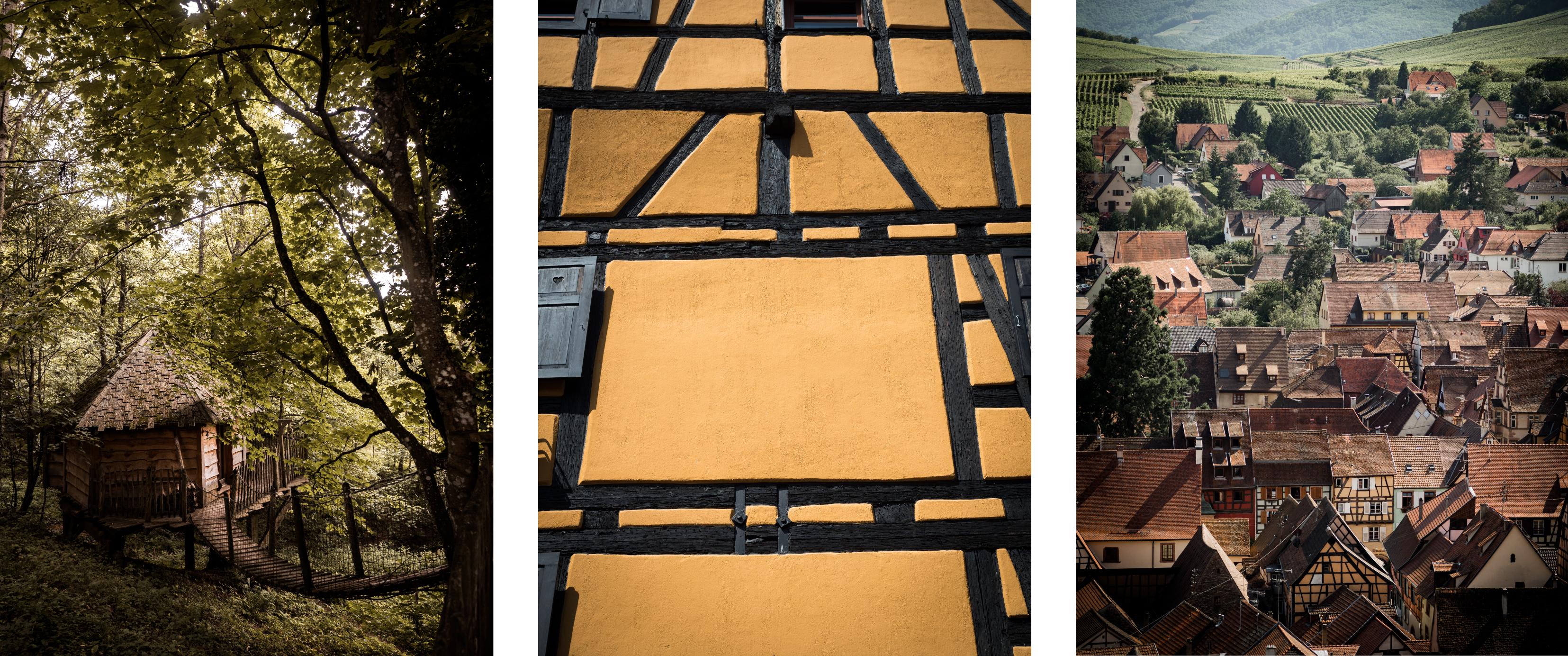 cabane dans les arbres en Alsace - pays de Ribauvillé et Riquewhir