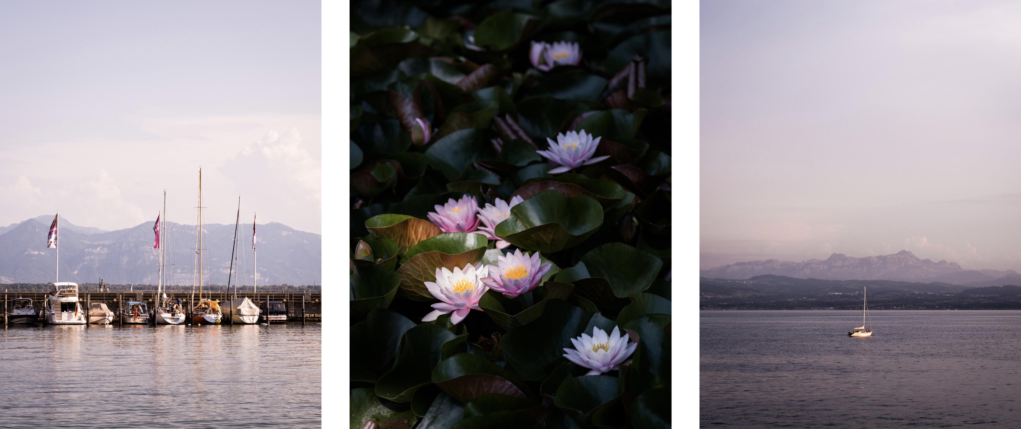 découvrir le lac de Constance - Bodensee ou lac de Constance - que voir sur le lac de Constance - visiter le lac de Constance