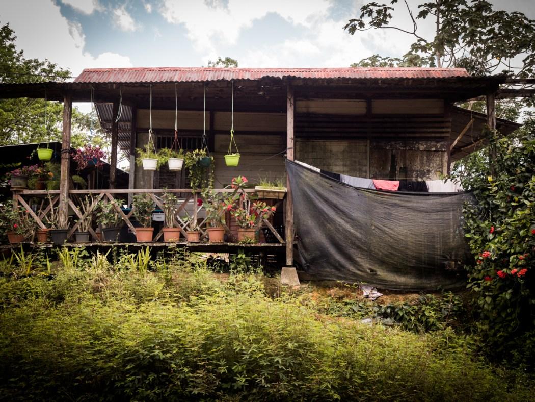 découvrir la Guyane - communauté asiatique en Guyane - village Hmong en Guyane - Asie en Guyane